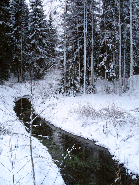It's not very cold, so small streams and large ditches haven't frozen over.