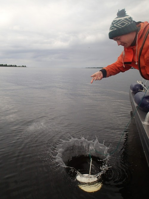 That thing is called a Secchi-disc, and it's used to determine the opacity of the seawater. The size and the color are standardized, and you lower it as deep as you can see it. (Photo: Metsähallitus / Suvi Saarnio)
